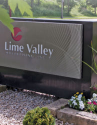 Lime Valley Acquires Web Development Firm VoyaguerWeb
