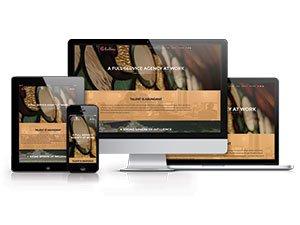 LVAI Website SIAA Award 2016