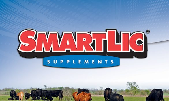 SmartLic Supplements